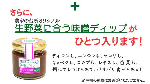 さらに農家の台所オリジナル 生野菜に合う味噌ディップが一つ入ります。