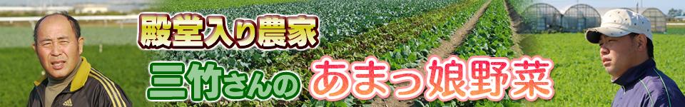三竹さんのあまっ娘野菜セット