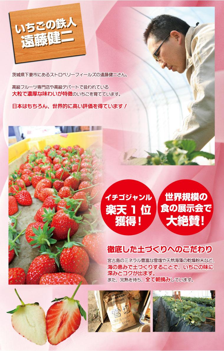 いちごの鉄人、ストロベリーフィールズ遠藤健二。徹底した土づくりで、いちごの味にコクを出す。