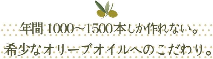 年間1000〜1500本しか作れない。希少なオリーブオイルへのこだわり。
