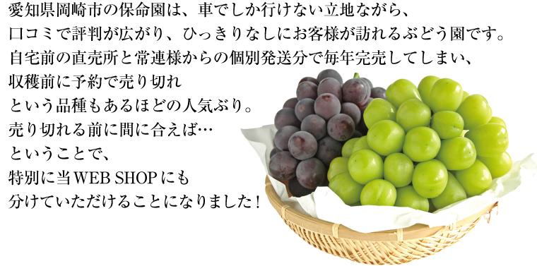 愛知県岡崎市の保命園は、今年も収穫前に予約で売り切れてしまう品種もあるほどの人気ぶり。
