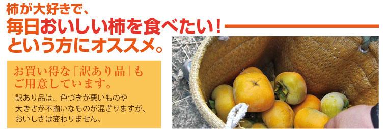 お買い得な訳あり品!美味しい柿を毎日食べたい方へ