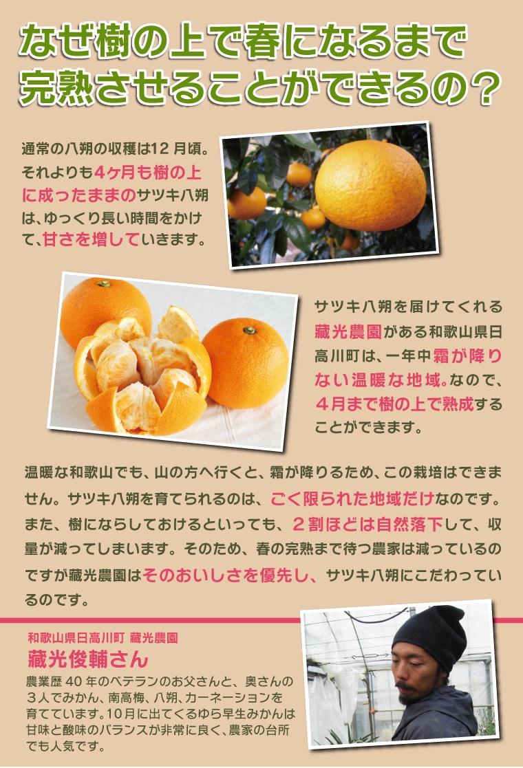 和歌山高川町は1年中温暖な気候。だから冬を超して樹の上で熟成できる。