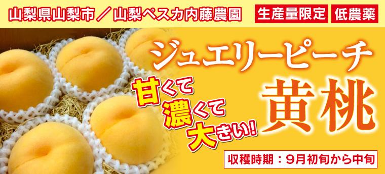 ジュエリーピーチ黄桃 甘くて濃くて大きい!