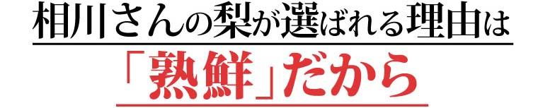 相川さんの梨が選べれる理由は「熟鮮」だから。