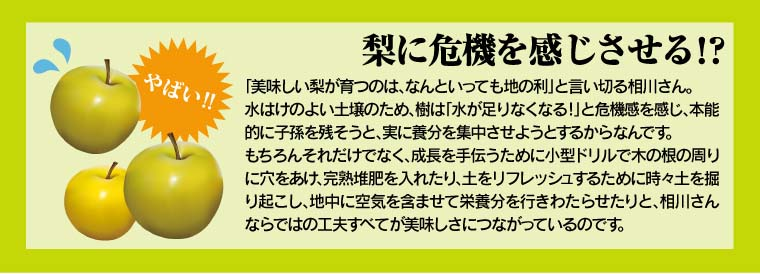 梨に危機を感じさせる!?相川さんならではの工夫が美味しさにつながっているのです。