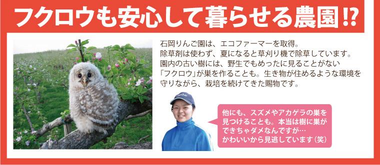 フクロウも安心して暮らせる!?エコファーマー取得。野生のフクロウが巣を作る安心安全な農園。