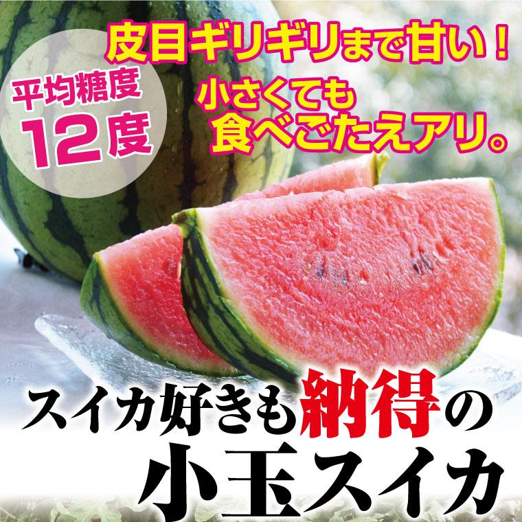 皮目ギリギリまで甘い!平均糖度12度!熊本県石原農園の小玉スイカ