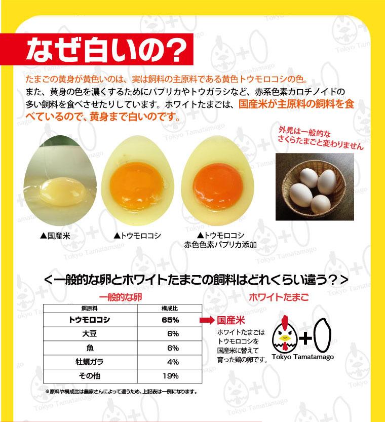 ホワイトたまごは、国産米が主原料の飼料を食べているので、黄身まで白いのです。