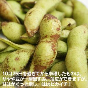 10/25〜サヤや豆が一層黒ずみますが、味はピカイチ!
