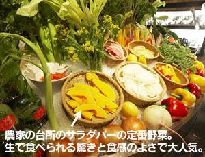 農家の台所のサラダバーの定番野菜。生で食べられる驚きと食感のよさで大人気