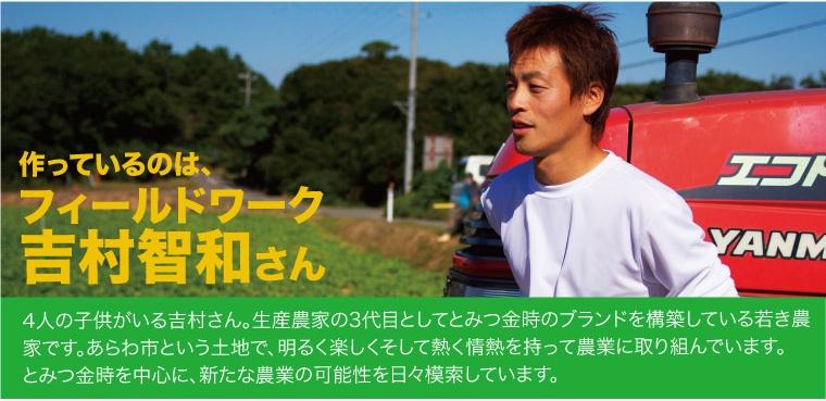 フィールドワークス吉村智和さんが育てた「とみつ金時」