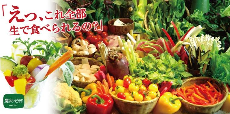 【農家の台所】えっ、これ全部生で食べられるの?サラダ野菜セット