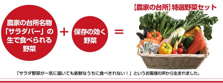 農家の台所特選野菜セットの内容