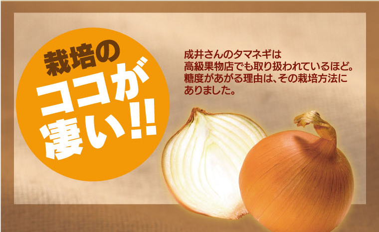 栽培のココがスゴイ!成井さんのタマネギは高級果物店でも取り扱われているほど。糖度があがる理由は、その栽培方法にありました。