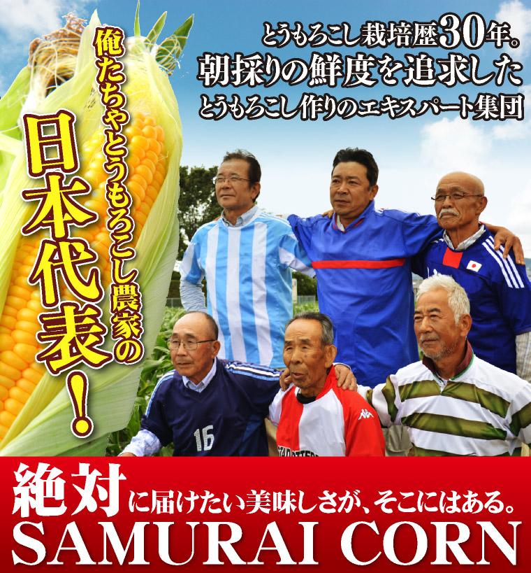 とうもろこし栽培歴30年、トウモロコシ農家の日本代表